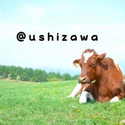 ushizawa