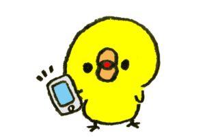 Twittterをチェックするヒヨコ