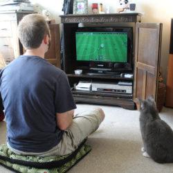 ゲームをしてる男性と猫
